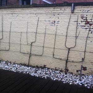 Creative Garden Care - Realisaties
