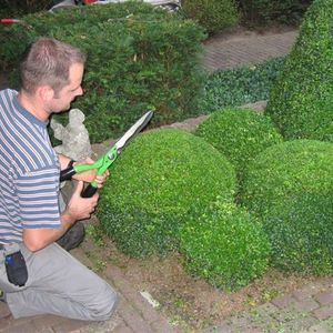 Creative Garden Care - Realisaties